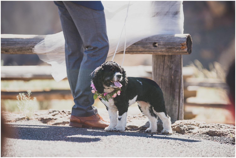 dog of honor flower dog at inimate smith rock wedding