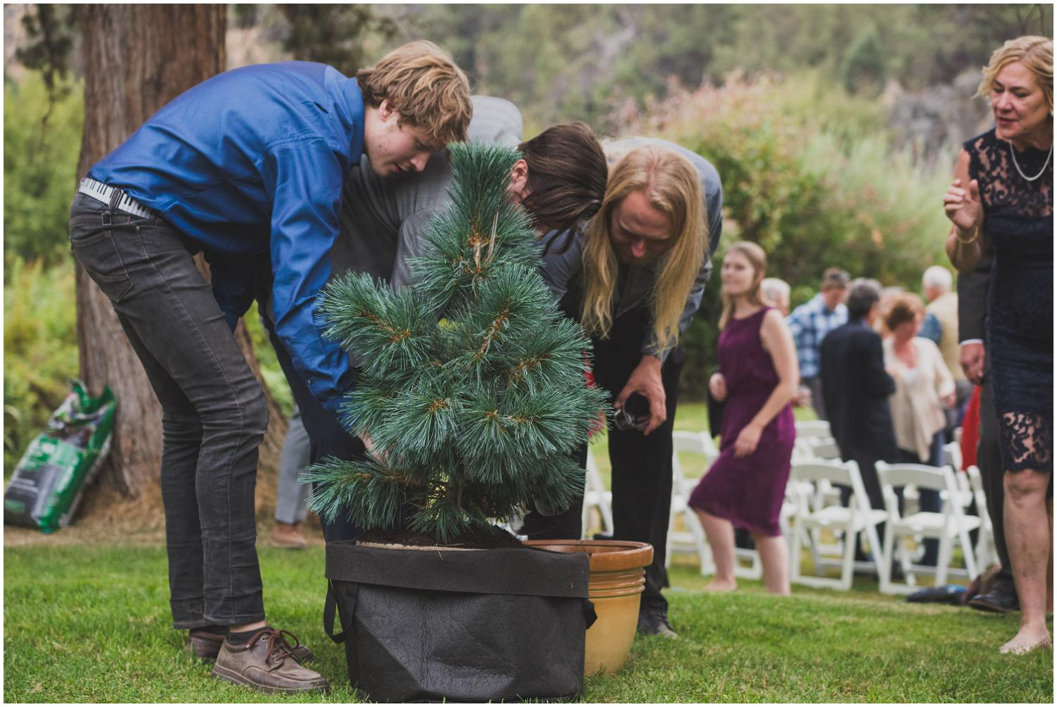 wedding guests and family add dirt to the bride and groom's unity tree after ceremony